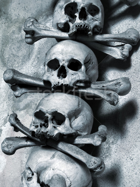 Koponyák csontok halott gótikus félelem horror Stock fotó © martin33