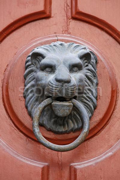 Leeuw gezicht hout roest antieke decoratie Stockfoto © martin33