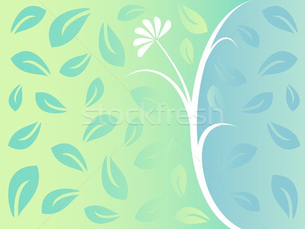 floral background Stock photo © martin33