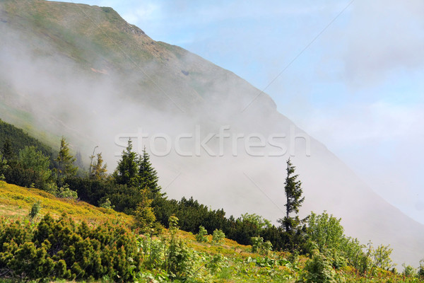 mountains scenery Stock photo © martin33