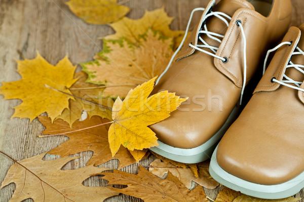 Cuir chaussures jaune laisse paire vieux Photo stock © marylooo