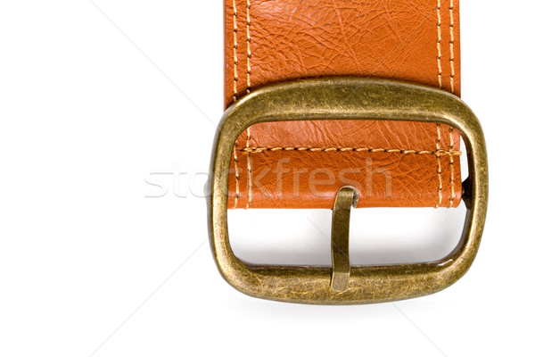 brown belt with bronze buckle Stock photo © marylooo
