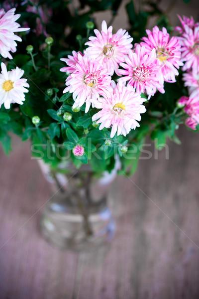 Roze chrysant glas vaas vintage boeket Stockfoto © marylooo