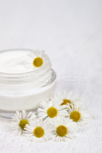 Stock photo: container with cream and chamomiles