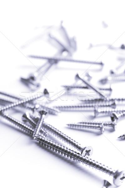 metal screws Stock photo © marylooo