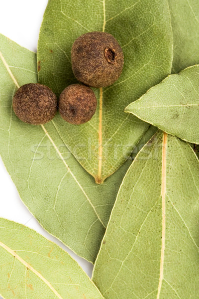 bay leaves and black pepper Stock photo © marylooo