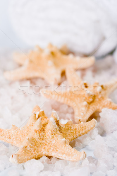 Handdoek zee sterren natuur schoonheid Stockfoto © marylooo