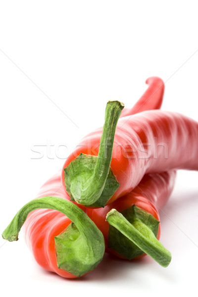 three red chilly peppers Stock photo © marylooo