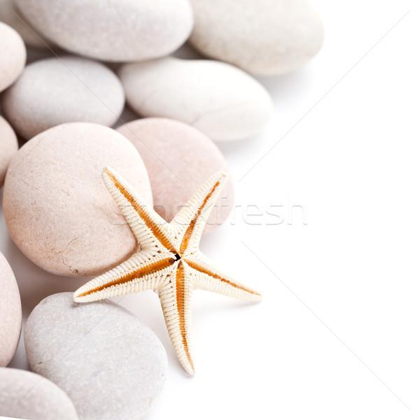 pile of stones and sea star Stock photo © marylooo