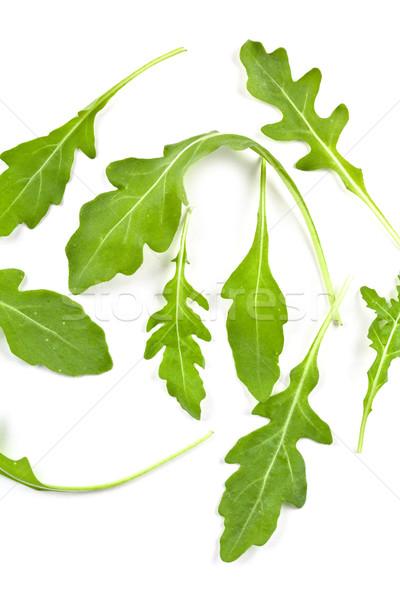 fresh rucola leaves Stock photo © marylooo