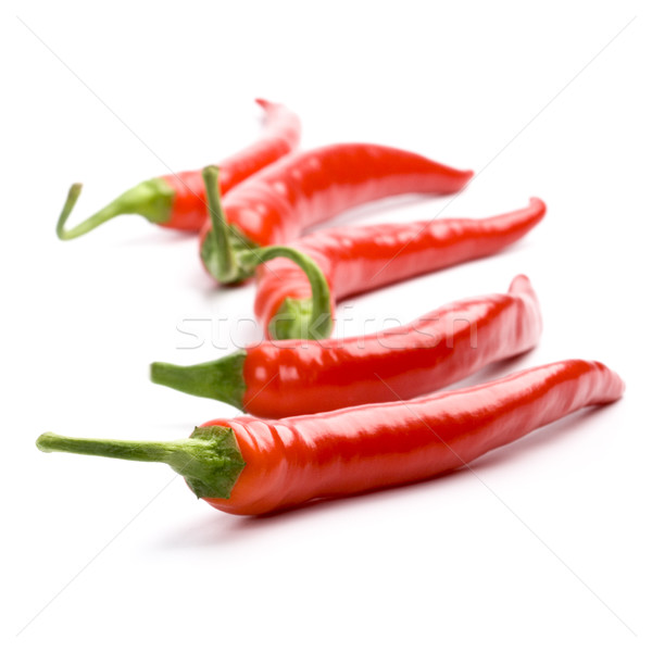 five red chilly peppers Stock photo © marylooo