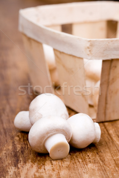 fresh champignon Stock photo © marylooo