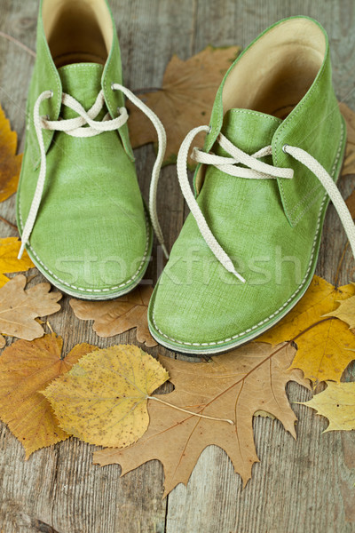 green leather boots and yellow leaves Stock photo © marylooo