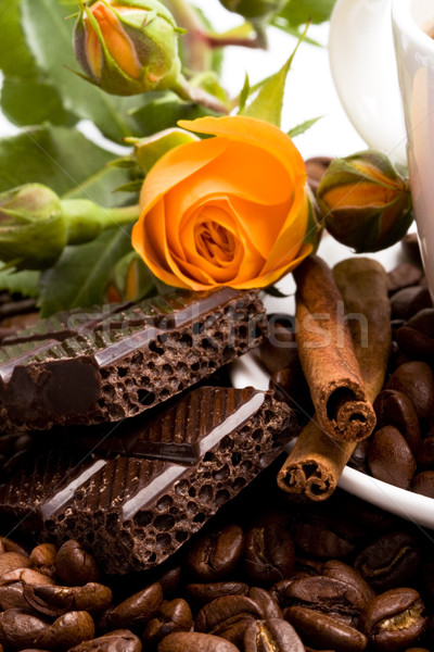 chocolate, coffee, cinnamon and flower Stock photo © marylooo