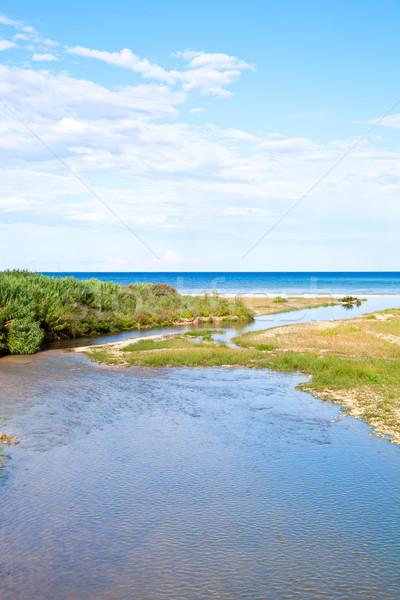 川 海岸線 青 海 風景 雲 ストックフォト © marylooo