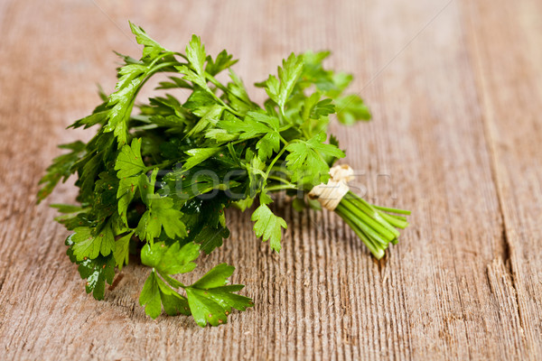 bunch of fresh parsley Stock photo © marylooo