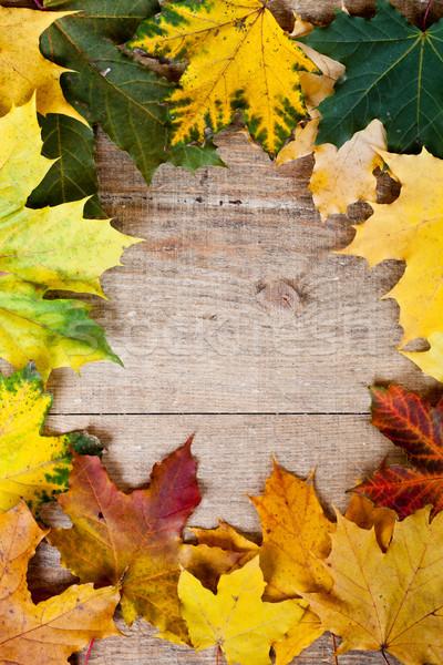 Hojas de otoño marco madera naturaleza rojo Foto stock © marylooo