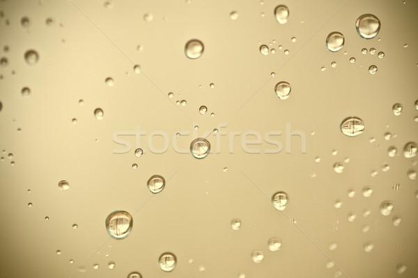 water drops on the window  Stock photo © marylooo