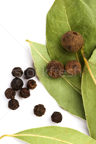 黒コショウ クローズアップ 白 緑 黒 食べ ストックフォト © marylooo