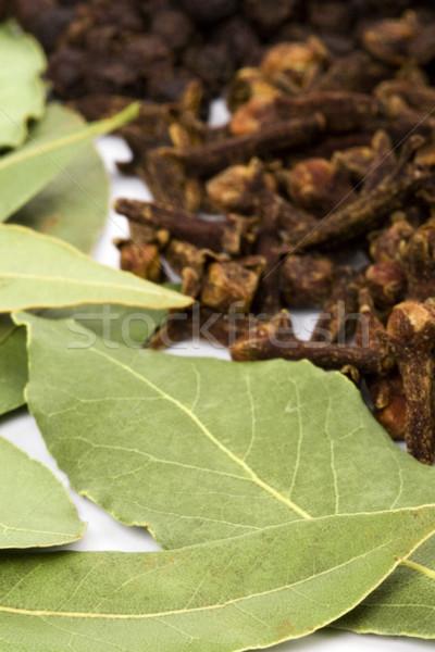 Hojas clavos pimienta negro cocina hierbas primer plano Foto stock © marylooo