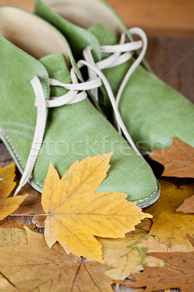 pair of green leather boots and yellow leaves Stock photo © marylooo