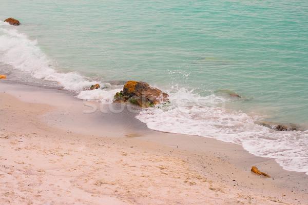 deserted beach Stock photo © marylooo