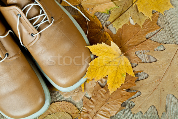 pair of biege leather shoes and yellow leaves Stock photo © marylooo