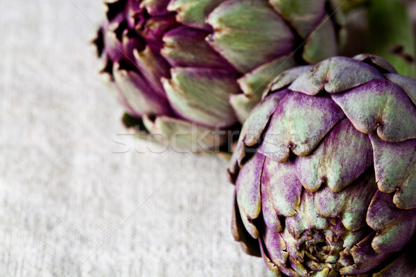 two fresh artichokes  Stock photo © marylooo
