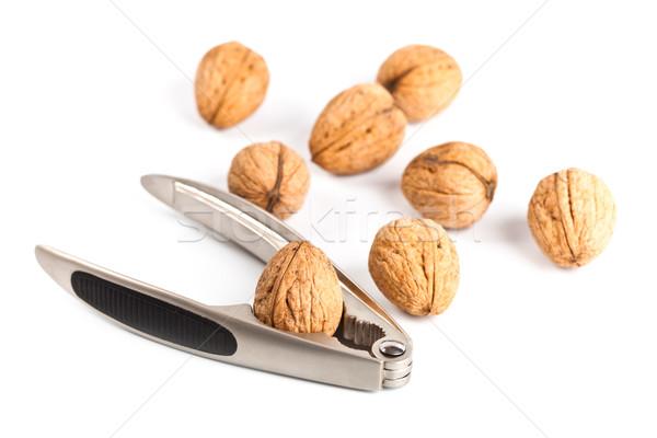 walnuts and nutcracker Stock photo © marylooo