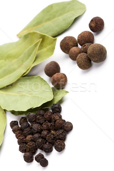 cooking herbs Stock photo © marylooo