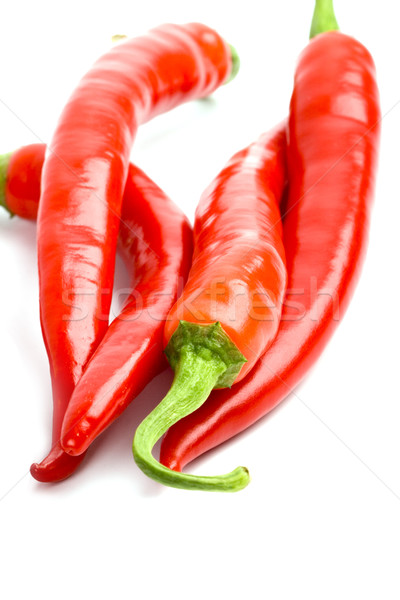 four red chilly peppers Stock photo © marylooo