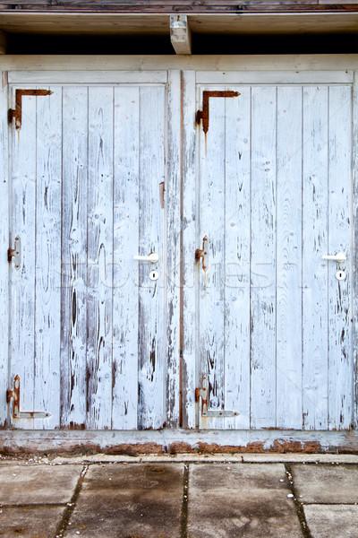 old doors with cracked paint Stock photo © marylooo