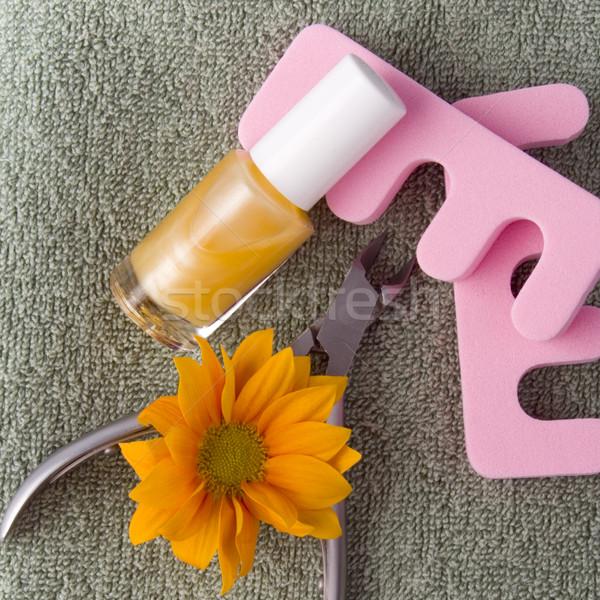 Pedicure schoonheid ingesteld bloem handdoek handen Stockfoto © marylooo