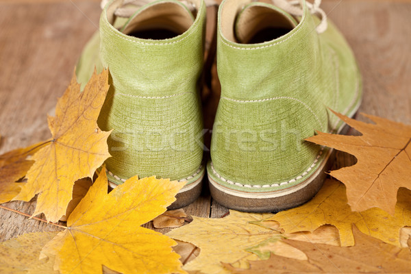 pair of green leather boots  Stock photo © marylooo