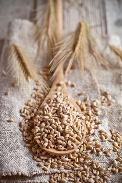 wheat grain in wooden spoon  Stock photo © marylooo