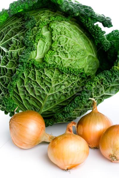 fresh savoy cabbage and onions Stock photo © marylooo