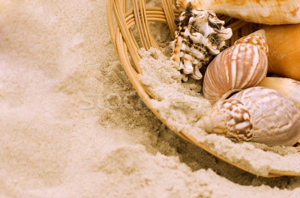 Obus panier sable plage mer été Photo stock © marylooo