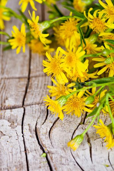 黄色の花 クローズアップ 素朴な 木製 花 ストックフォト © marylooo