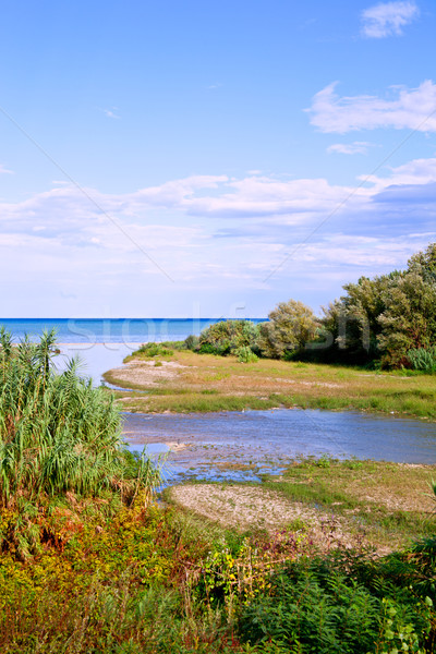 Stock photo: river, coastline and blue sea