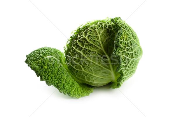 fresh savoy cabbage Stock photo © marylooo