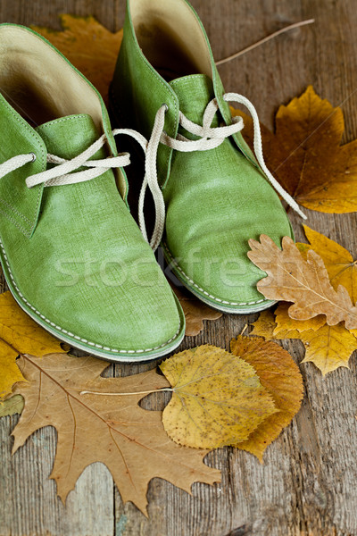 boots and yellow leaves Stock photo © marylooo