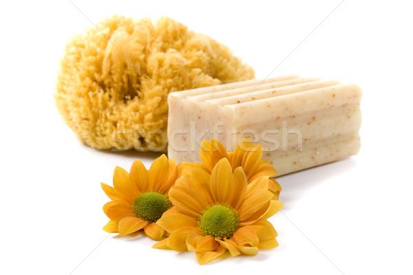 Naturelles éponge savon fleurs blanche santé Photo stock © marylooo