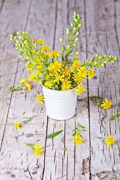 żółte kwiaty wiadro rustykalny kwiaty Zdjęcia stock © marylooo