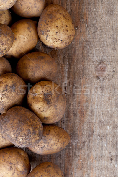 organic potatoes  Stock photo © marylooo