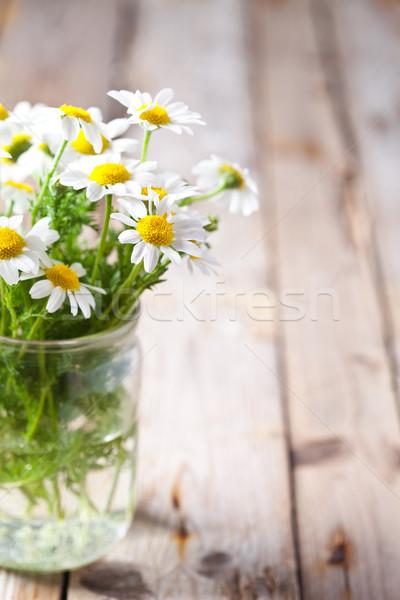 chamomile bouquet in jar  Stock photo © marylooo