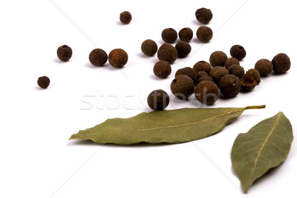 Aromatique poivre laisse blanche feuille fond Photo stock © marylooo