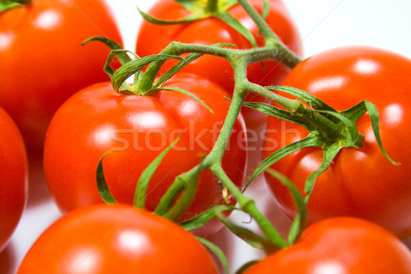 Fraîches tomates nature vert couleur Photo stock © marylooo