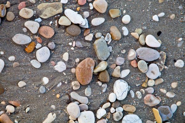 round colored sea pebbles Stock photo © marylooo