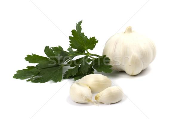 Stock photo: garlics with parsley