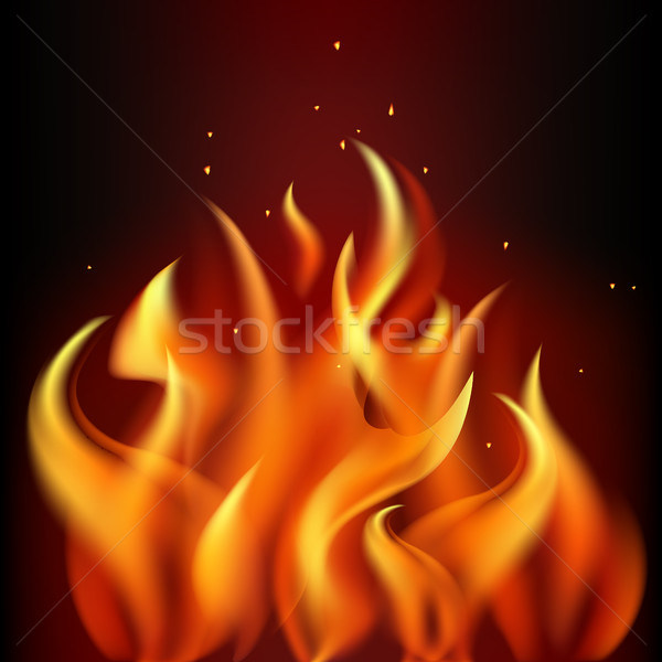 Red burning fire flame on black background Stock photo © MarySan